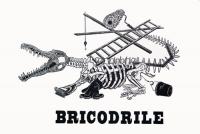 45_bricodrile-500.jpg